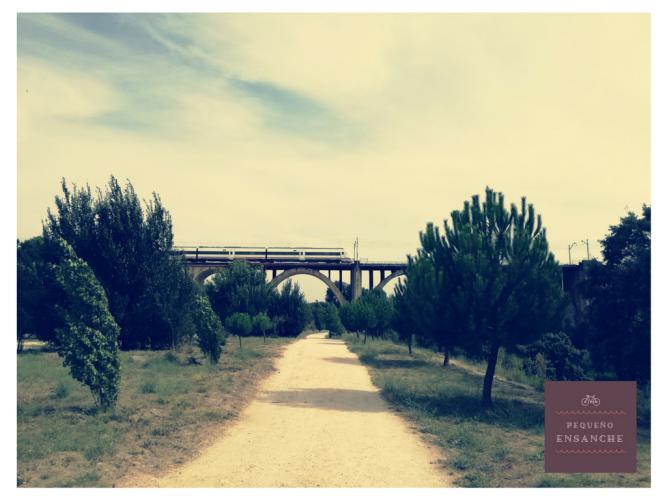 picnic_el_pardo_con_ninos (1)