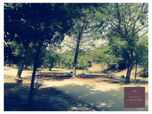 picnic_el_pardo_con_ninos (4)